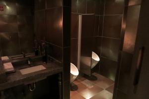Gratuitous Shot of the Men's Room
